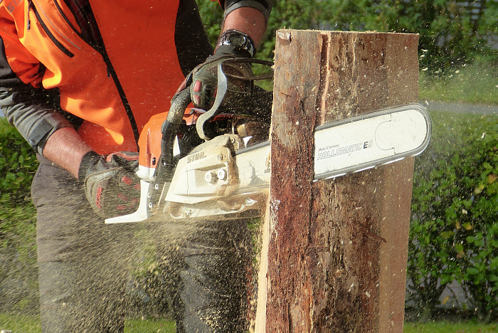 action-adult-chainsaw-209229.jpg